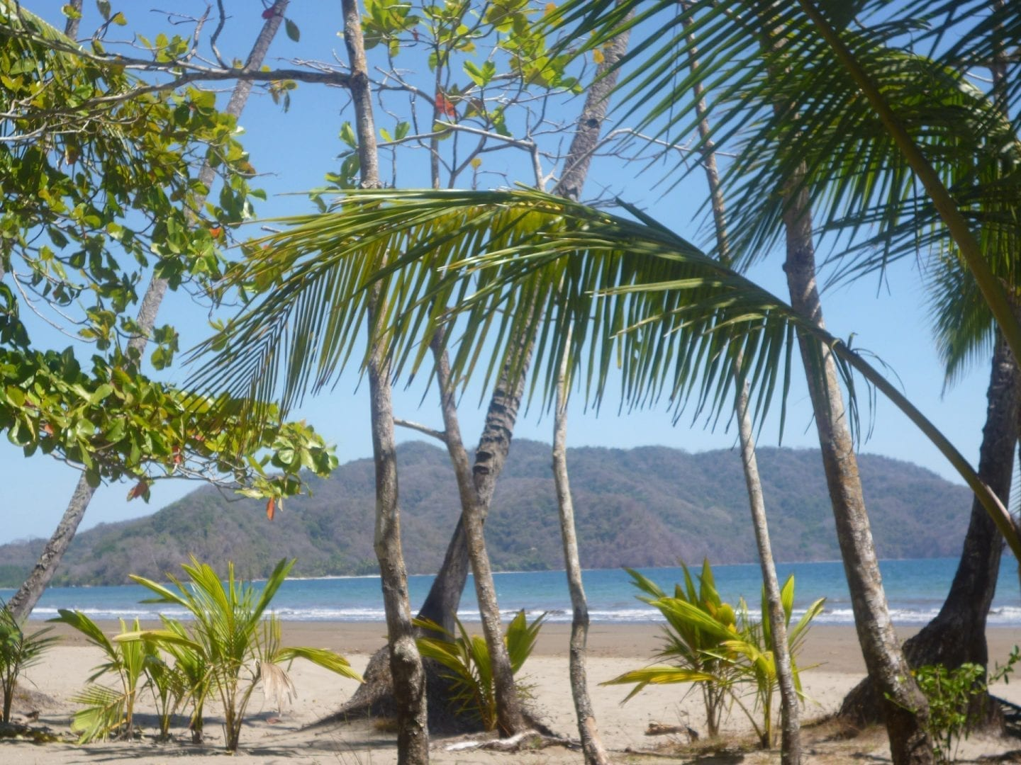 costa-rican-beach-1362351470vLk